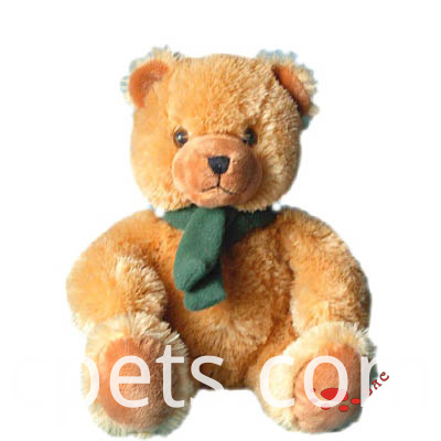 teddy bear packing in box